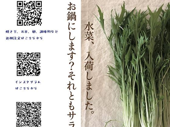 ゆうきや通信 vol.3