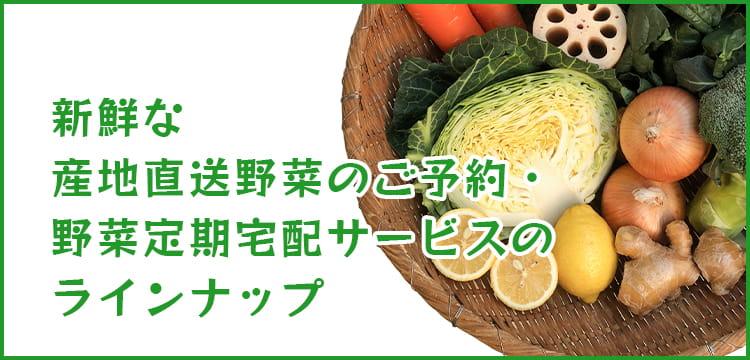 新鮮な産地直送野菜のご予約・野菜定期宅配サービスのラインナップ